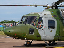 Fairford 2009 photo No.031