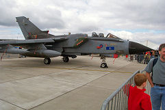 Waddington 2002 photo No.03
