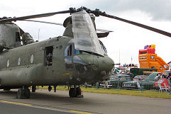 Waddington 2002 photo No.11