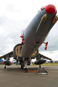 Waddington 2002 photo No.49