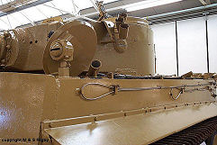 Tiger 1 photo No.2