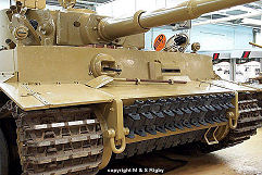 Tiger 1 photo No.3