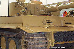 Tiger 1 photo No.5